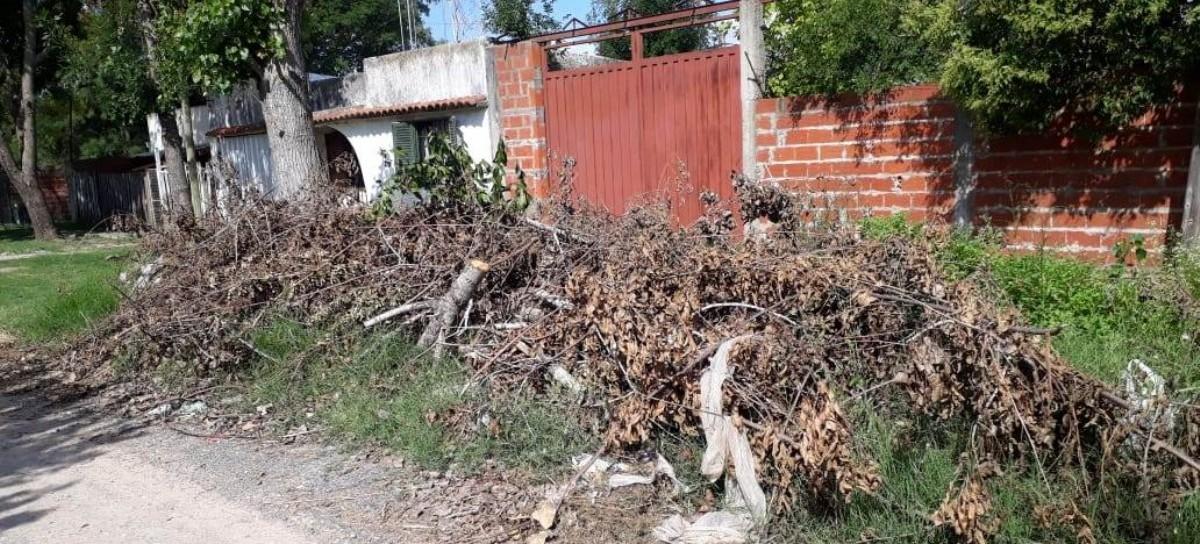 Vecinos del barrio San Carlos de La Plata, olvidados por el municipio pese a reclamos de limpieza