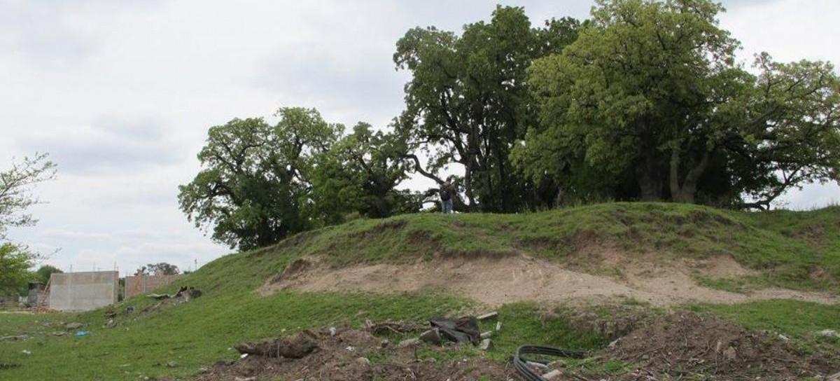La Matanza: destruyeron el yacimiento arqueológico Tres Ombúes ubicado en Ciudad Evita