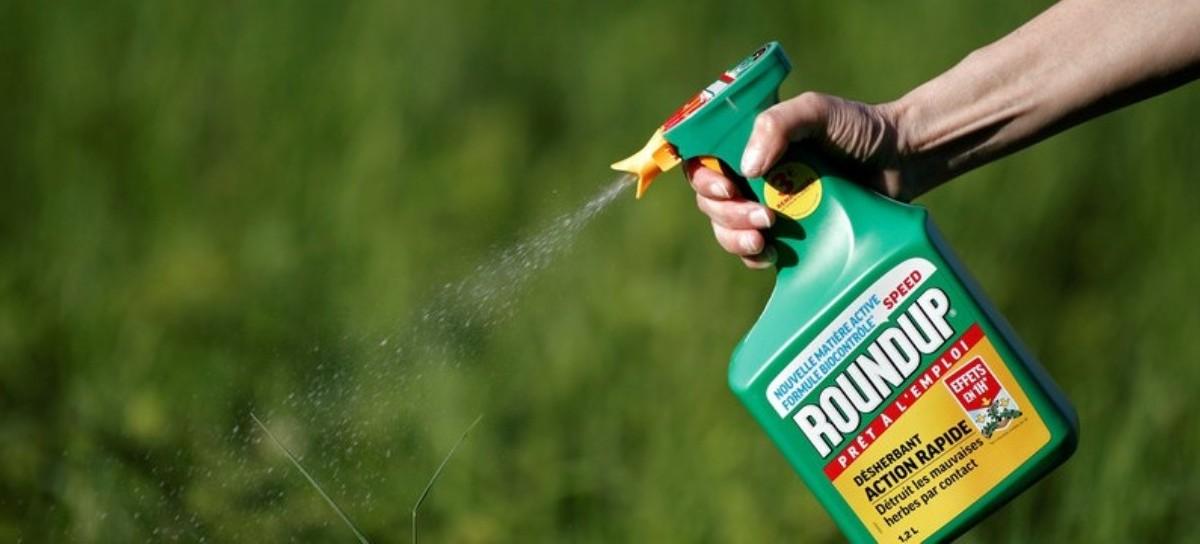 ROUNDUP, un poderoso herbicida usado por productores bonaerenses, condenado por ser cancerígeno
