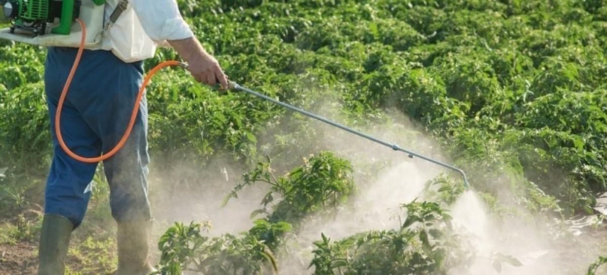 La Plata: advierten que el uso de agroquímicos no está regulado en la producción de alimentos