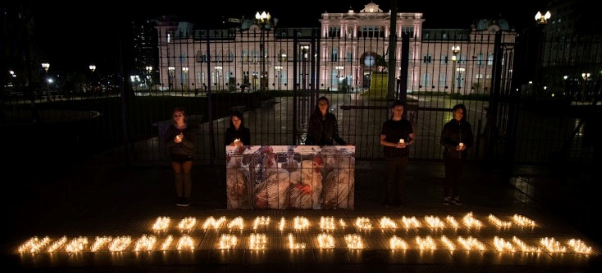 """""""Bonafide: Cambiá la historia de los animales"""",  activistas se vistieron de luto en Plaza de Mayo"""