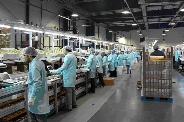 La Federación Económica de Buenos Aires (FEBA) advirtió que la actividad industrial en la Provincia cayó un 1,1% en enero y registra12 meses consecutivos de caída en sus niveles.