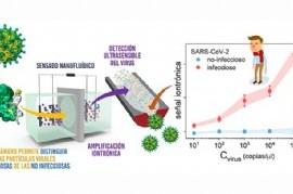 CONICET La Plata desarrolló un novedoso test rápido de detección de COVID-19